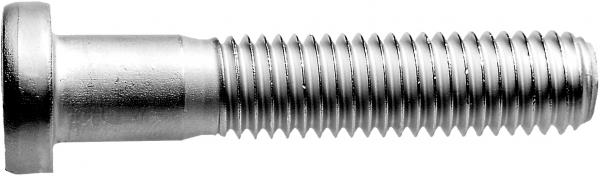 SM 1291-01 Zylinderschraube